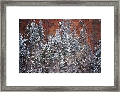 Ghosts Of Winter Framed Print by Peter Coskun