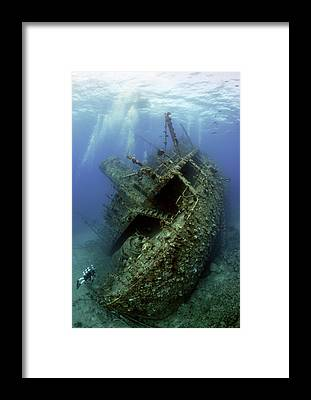 Scuba Diving Framed Prints