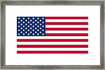 Giant American Flag Framed Print by Ron Hedges
