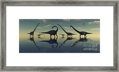Giant Sauropod Dinosaurs Grazing Framed Print by Mark Stevenson