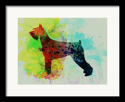 Giant Schnauzer Framed Prints