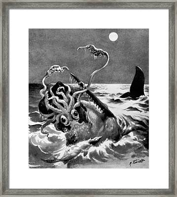 Giant Squid Attacking Sperm Whale, 1899 Framed Print by British Library