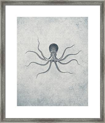 Giant Squid - Nautical Design Framed Print