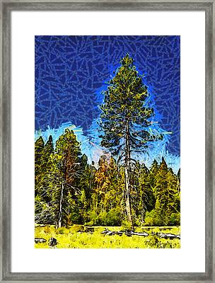 Giant Tree Abstract Framed Print by Barbara Snyder