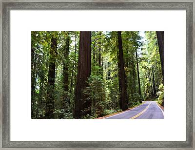 Giants And The Road Framed Print by Michelle Calkins