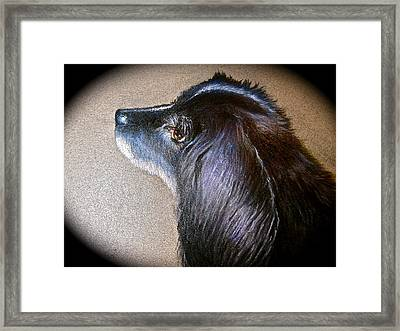 Framed Print featuring the painting Gibson by Patricia Schneider Mitchell