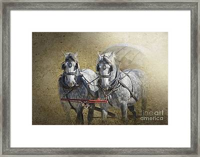 Giddyup Framed Print by Betty LaRue