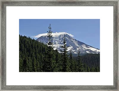 Gifford Pinchot National Forest And Mt. Adams Framed Print
