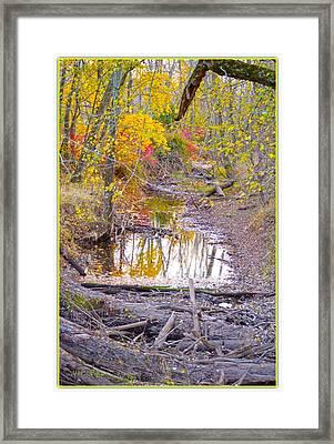 Gift Of Autumn Framed Print