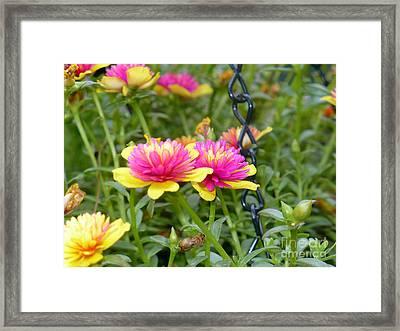 Gift Of Vision Framed Print