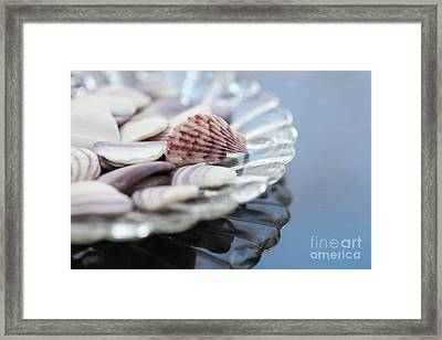 Gifts From The Sea Framed Print by Kay Pickens