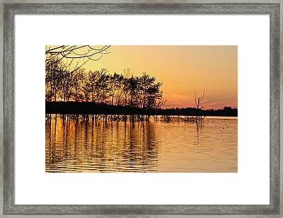 Gilded Sunset Framed Print by Julie Andel