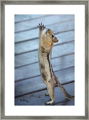 Framed Print featuring the photograph Gim-me-gim-me-gim-me by Patrick Witz