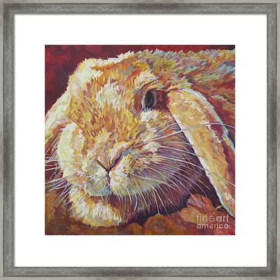 Ginger Framed Print by Patricia A Griffin