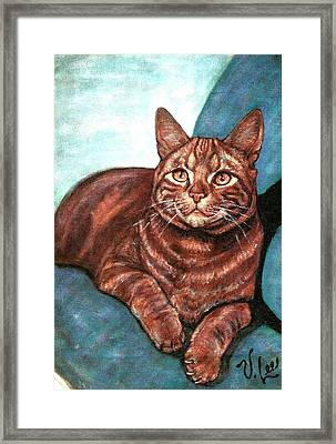 Framed Print featuring the painting Ginger Tabby by VLee Watson