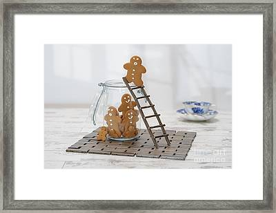 Gingerbread Ladder Framed Print by Amanda Elwell