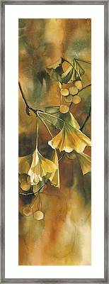 Gingko In Autumn Framed Print