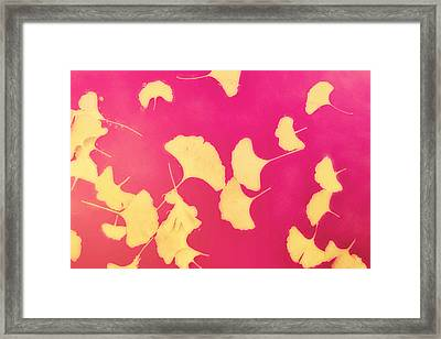 Gink Go Pink Framed Print by Amy Tyler