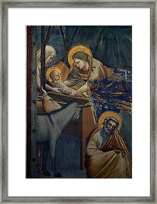Giotto, Stories Of Christ Nativity Framed Print