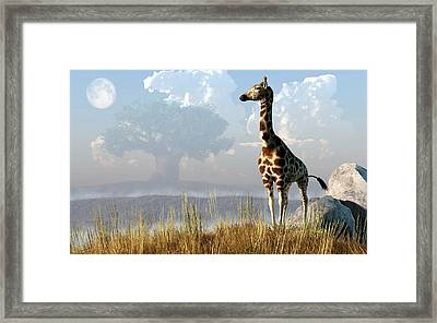 Giraffe And Giant Baobab Framed Print by Daniel Eskridge