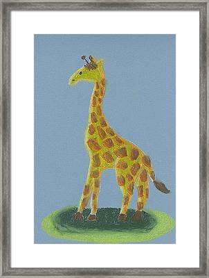 Giraffe Gazing Framed Print by Fred Hanna