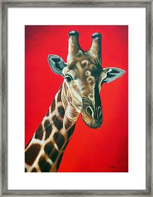 Giraffe Framed Print by Ilse Kleyn