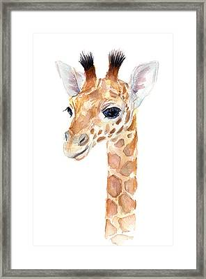 Giraffe Watercolor Framed Print by Olga Shvartsur