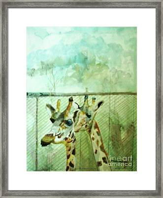Giraffe World Framed Print