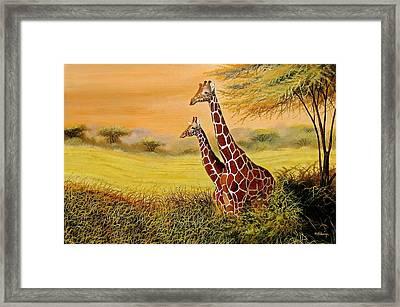Giraffes Watching Framed Print