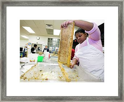 Girl Uncapping Honeycomb Framed Print