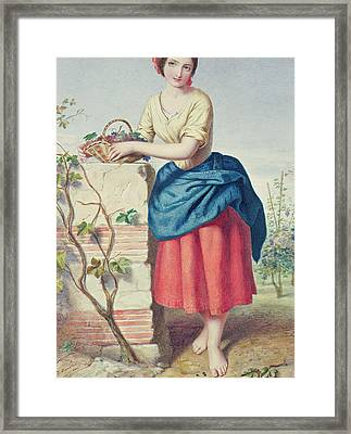 Girl With Basket Of Grapes Framed Print