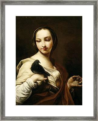 Girl With Black Dove Framed Print by Giuseppe Maria Crespi