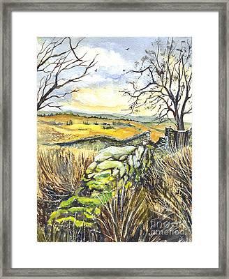 Gisburn Forest Lancashire Uk Framed Print by Carol Wisniewski
