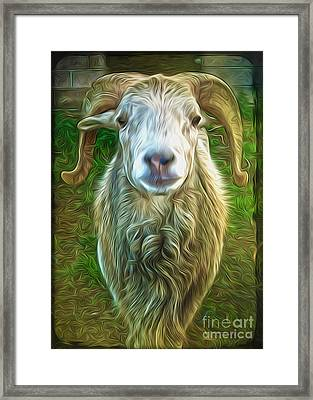 Framed Print featuring the painting Git Yer Goat by Gregory Dyer