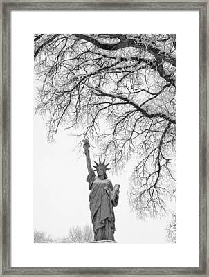 Give Me Liberty Framed Print