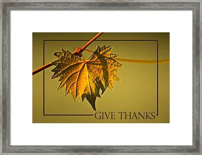 Give Thanks Framed Print by Carolyn Marshall