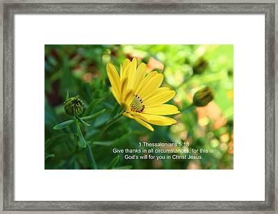 Give Thanks Framed Print by Lynn Hopwood
