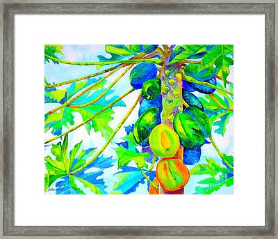 Abundant Blessings Framed Print