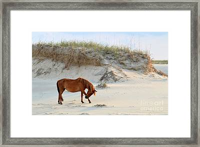 Giving Thanks Framed Print by Debbie Green