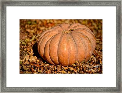 Giving Thanks For The Simple Things Framed Print