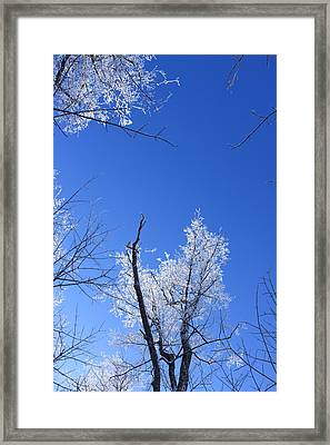 Givre Framed Print by Maude Demers