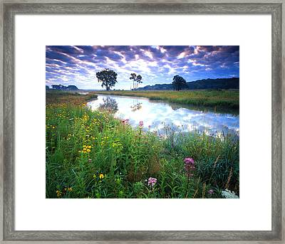 Glacial Garden Framed Print by Ray Mathis
