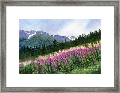 Glacier Valley Fireweed Framed Print by Sharon Freeman