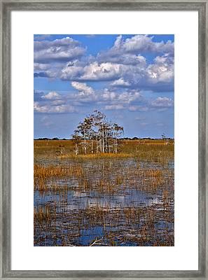 Glades Framed Print