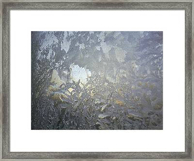 Gladiolas In Ice Framed Print by Jaime Neo