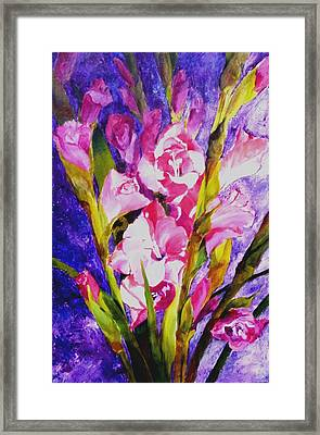 Gladiolus Glamour Framed Print by Betty M M   Wong