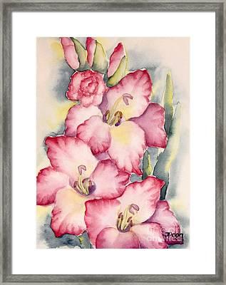 Gladiolus In Pink Framed Print