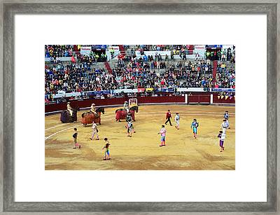 Glamour In The Bullfight Framed Print by Laura Jimenez