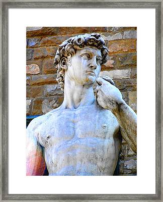 Glance At David Framed Print by Oleg Zavarzin