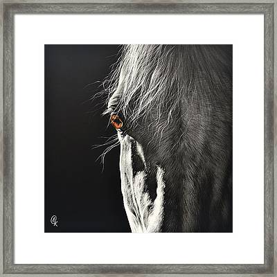 Glance Framed Print by Elena Kolotusha